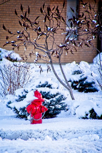 A snowy fire hydrant in West Valley City, Utah