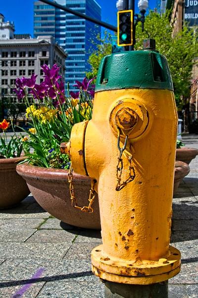 Enjoying the flowers in downtown Salt Lake City, Utah