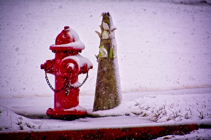 Wintertime in South Jordan, Utah