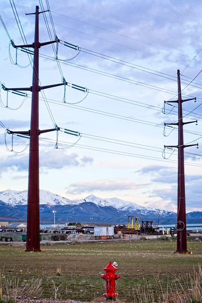 Protecting the power poles in case of an electrical fire.