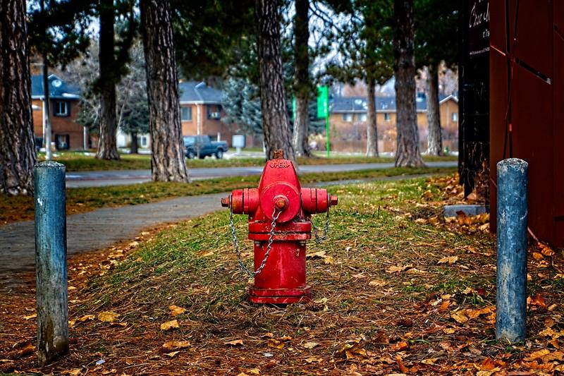 Walking around Liberty Park, Salt Lake City, Utah