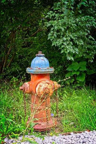 SRf2008_2955_Hydrant