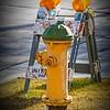 SRf2001_1882_Hydrant