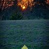 SRf2104_3970_Sunset_Hydrant