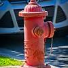 SRf2007_2944_Hydrant