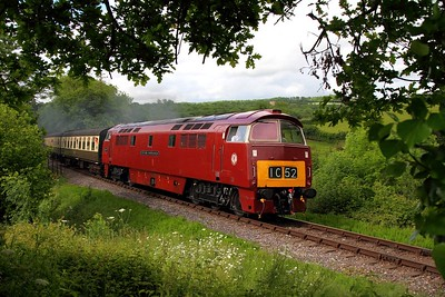 D1010 on the 0900 Bishops Lydeard to Minehead at Nethercott on the 8th June 2014