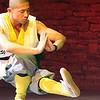 Die R點kkehr der Shaolin M鰊che