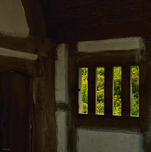 Meadow Window