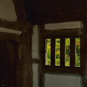 Meadow Window