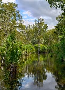 Leliyn ; Edith River