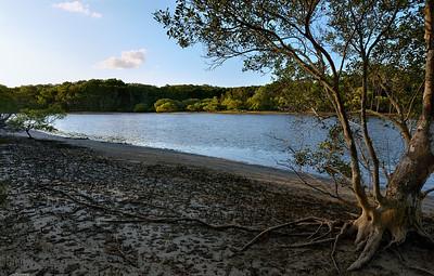 Evans River