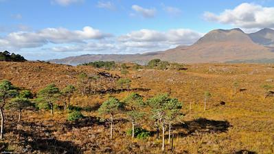 Loch Torridon landscape