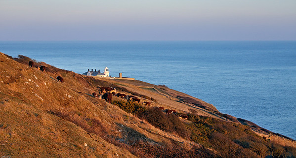 Durlston Lighthouse