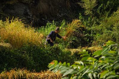Gurung Man II