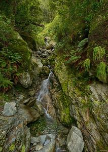 Fiordland III
