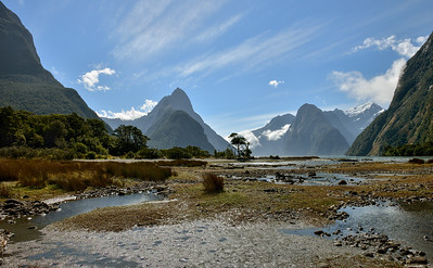 Fiordland ; Low Tide