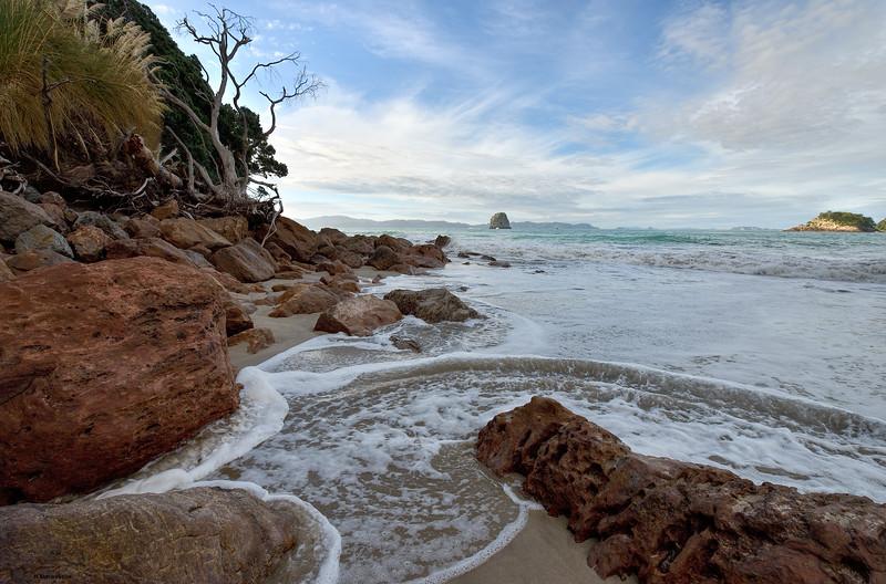Wild Beaches II