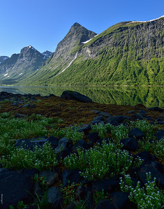 Norangsfjorden