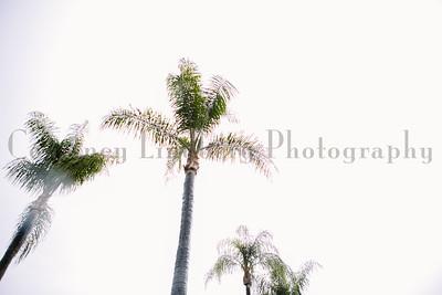 (C)CourtneyLindbergPhotography_071815_00005