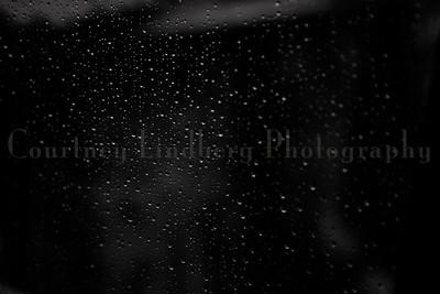 (C)CourtneyLindbergPhotography_071815_00030