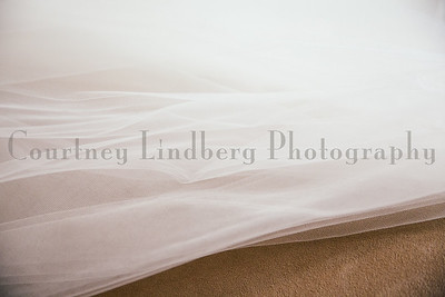 (C)CourtneyLindbergPhotography_030715_0032