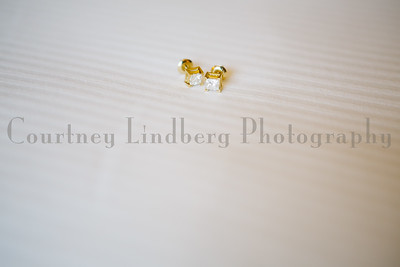 (C)CourtneyLindbergPhotography_070316_00024