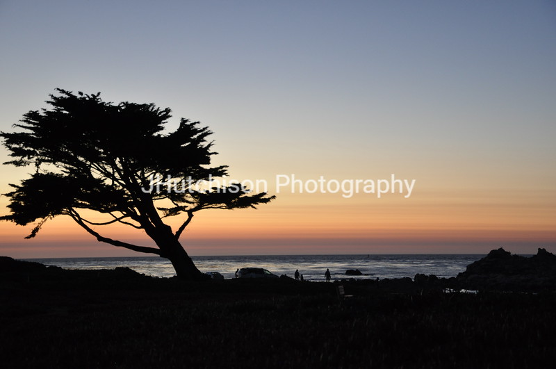 CA0001 - Monterey Sunset