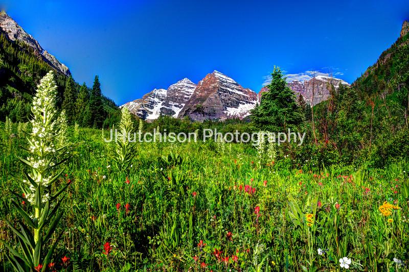 Flower-filled Meadow at Maroon Bells