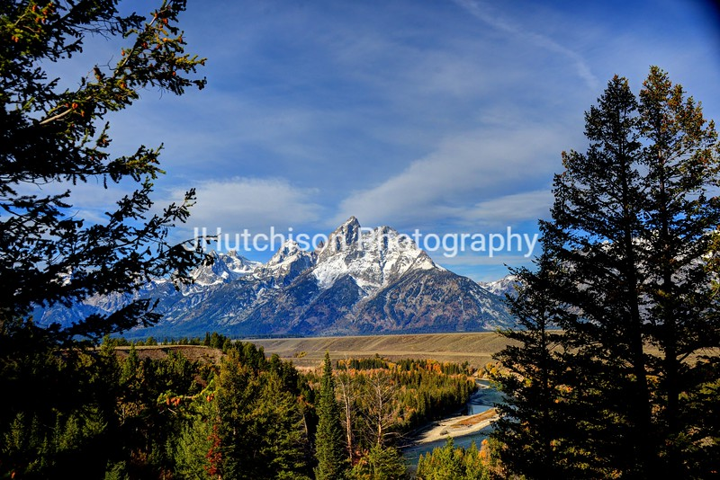 WY0003 - Teton's & Snake River Framed With Trees