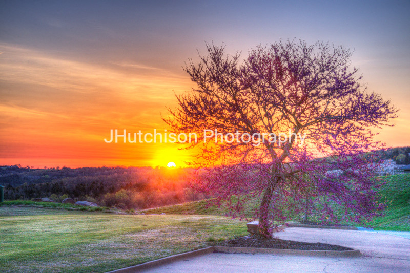 Redbud Sunrise at Buffalo Ridge
