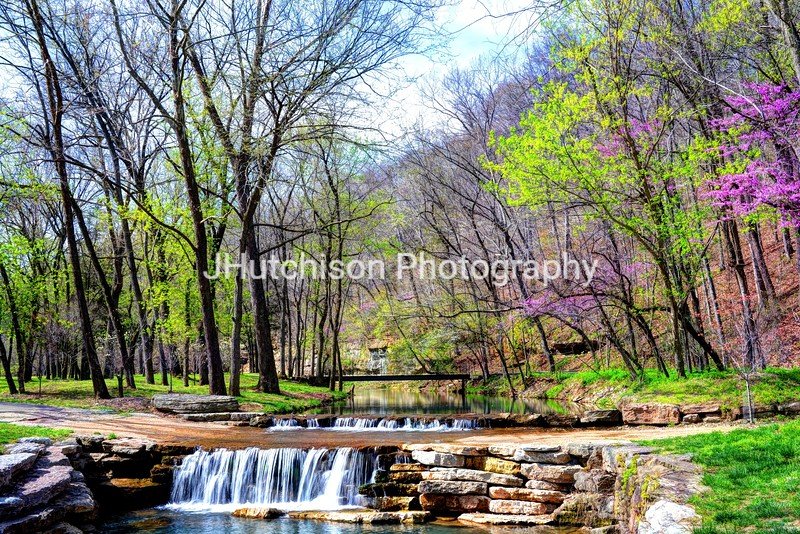 Spring in Dogwood Canyon
