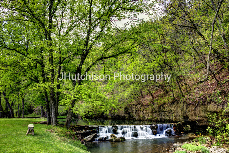Dogwood Canyon in Springtime