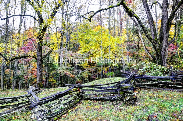 TN0004 - Smoky Mountain Rail Fence & Trees