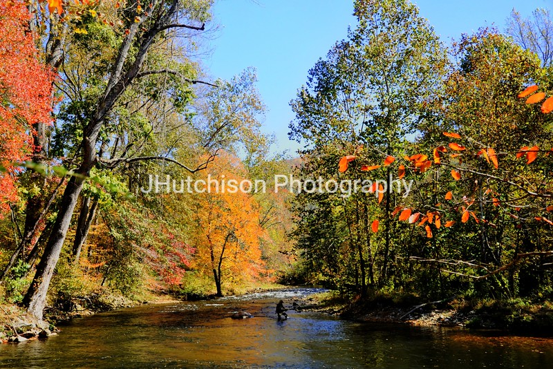 1157 - Fly Fishing in Smoky Mountains