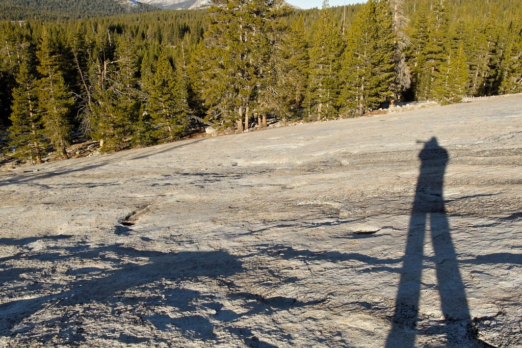 A very skinny Vane in his youth stalking a photo, Lembert Dome, CA.