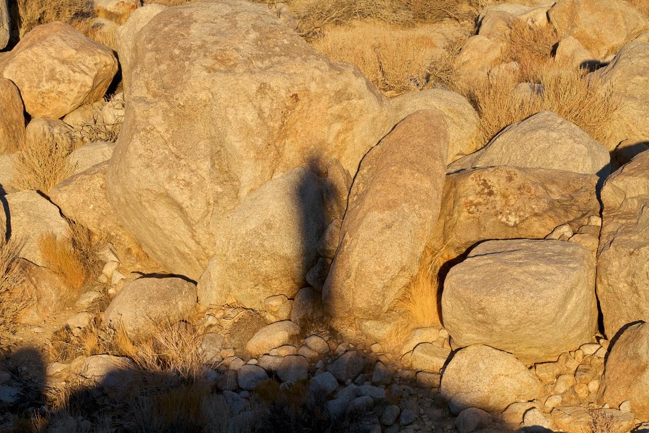 Rare self-portrait of Vane levitating, Seeking Angels Project, Tuttle Creek, CA.