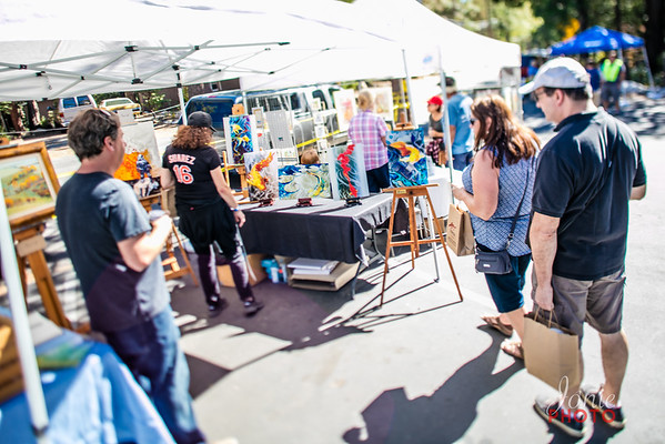 Idyllwild Art Alliance - Wine Walk 2016-5650