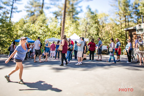 Idyllwild Art Alliance - Wine Walk 2016-5646