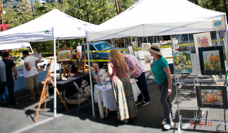 Idyllwild Art Alliance - Wine Walk 2016-5642