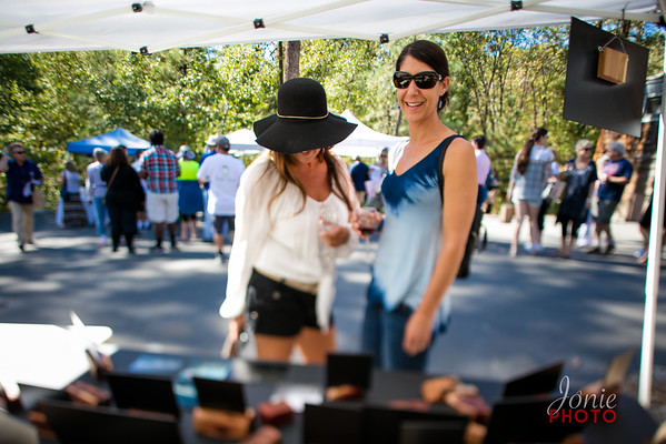 Idyllwild Art Alliance - Wine Walk 2016-5668