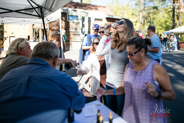 Idyllwild Art Alliance - Wine Walk 2016-5660