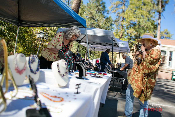 Idyllwild Art Alliance - Wine Walk 2016-5644