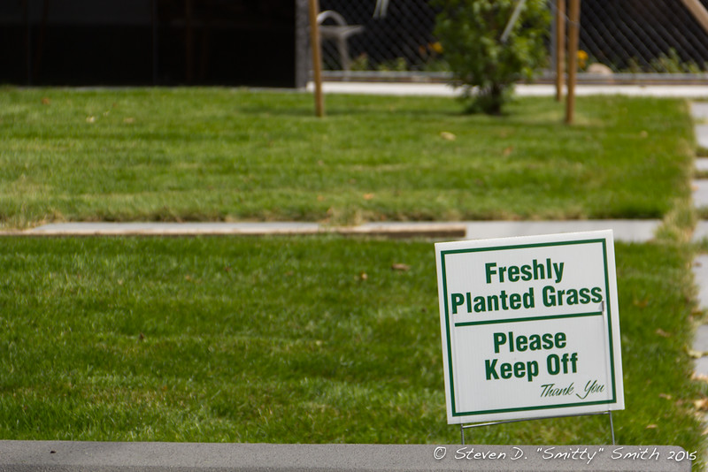 Day 192 - Keep off the grass!