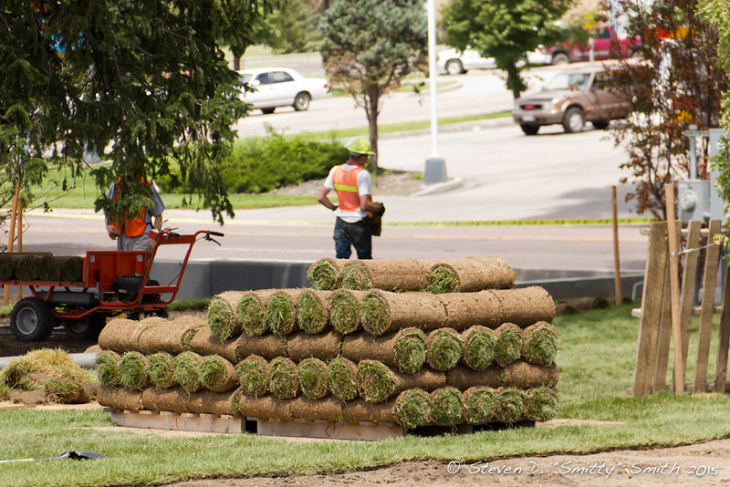 Day 169 - Smaller rolls of sod on pallets.