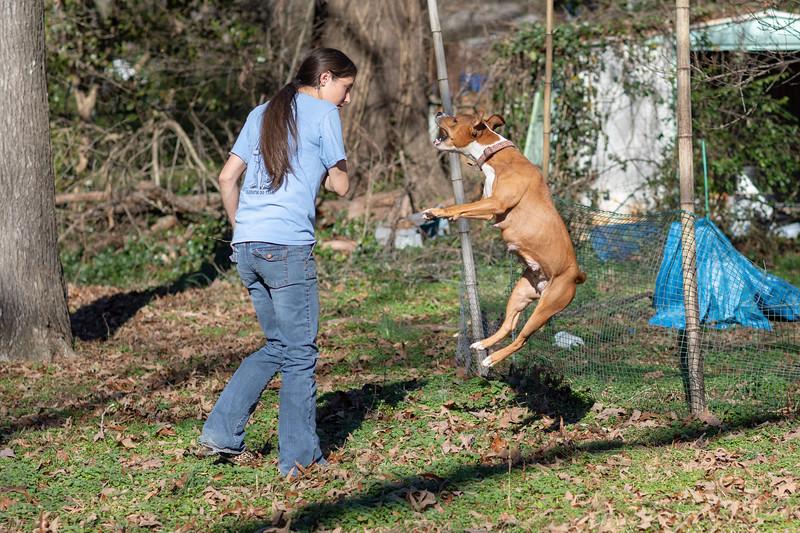 karma-jump