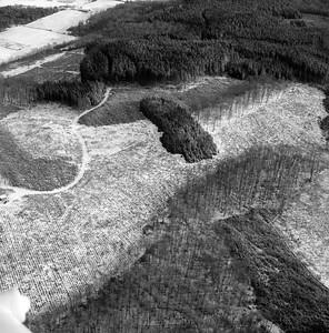 0,75km southeast Vrams-Gunnarstorp | EE.1093