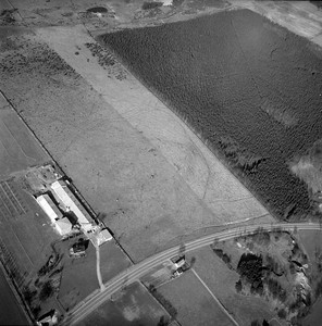 Dalby Pig farm station | EE.1665