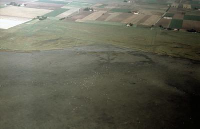 Eskilstorp fields | EE.1898