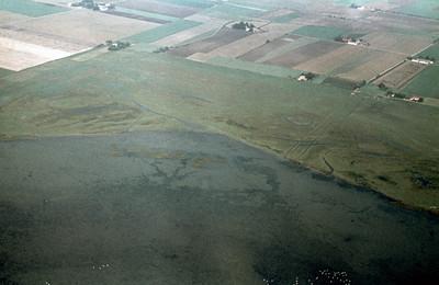 Eskilstorp fields | EE.1900