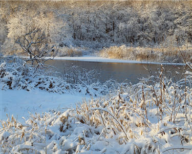 Snow on Sudbury River